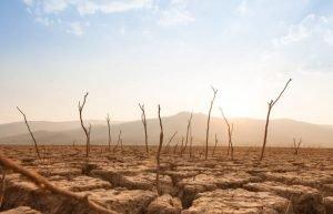 Secas mais frequentes devido as mudanças climáticas